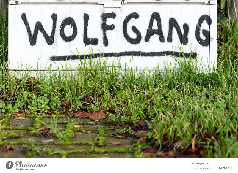 First names | Discovery topic day first name Wolfgang Deserted Colour photo Exterior shot Day Close-up Characters Distributor junction box Graffito Graffiti