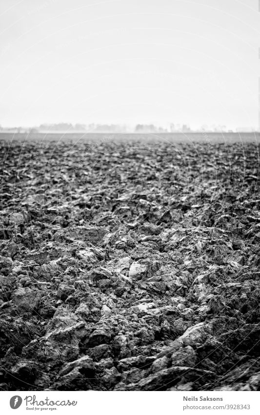 Plowed agricultural farm field pattern Soil ground earth sky farmland dirt agriculture agronomy asia autumn background black brown cultivated cultivating
