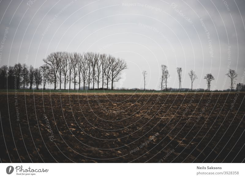 Plowed agricultural farm field pattern with bare trees in background Soil earth sky farmland dirt agriculture agronomy asia autumn black brown cultivated