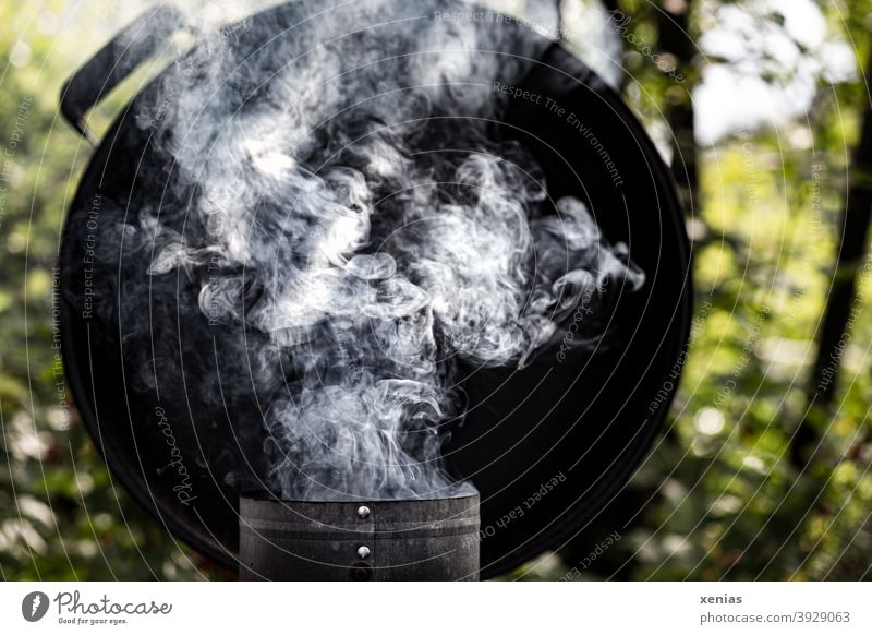 The barbecue is smoking in the garden Barbecue (apparatus) smoke Smoke kettle grill Fireside Garden BBQ Ignite Summer BBQ season Environment Nutrition
