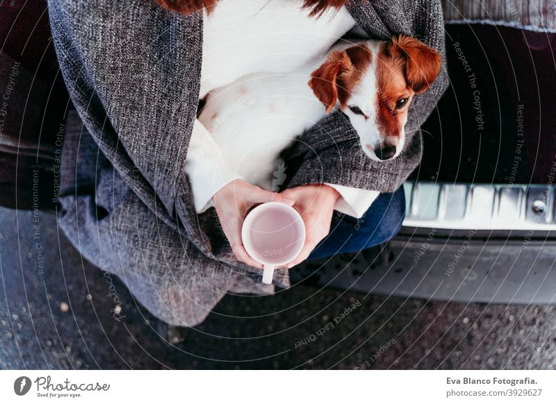 young woman and cute jack russel dog in car. Winter season, snowy mountain background blanket nature together wanderlust beauty active togetherness friends day