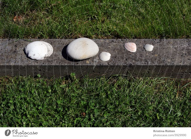shells and a pebble lie on the grave border Stone Mussel seashells Pebble Grave need customs Ritual Memory souvenir consolation Death Grief Goodbye loss mourn