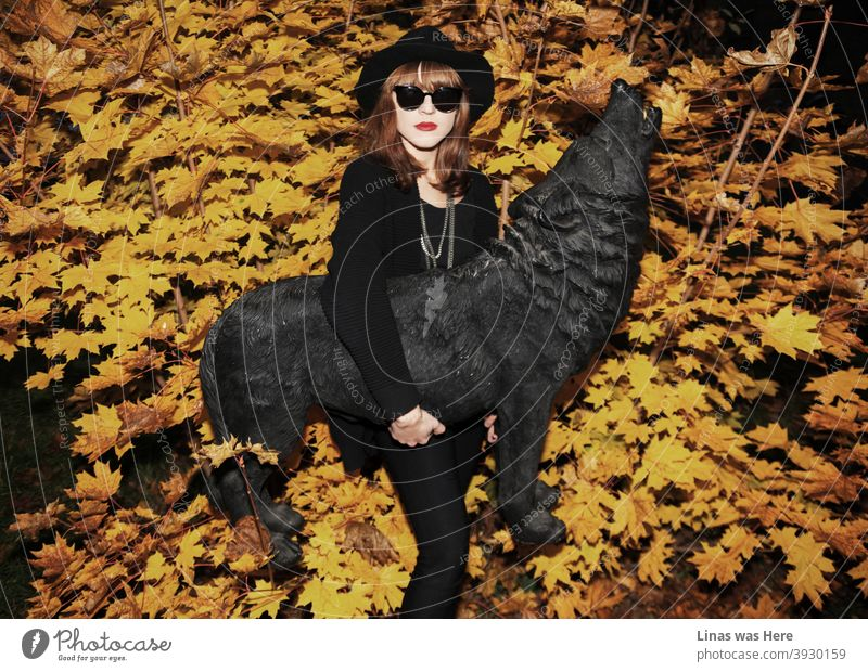 Autumn is here. A gorgeous brunette model dressed in black is posing with a black wolf statue. Yellow golden leaves are in the background and the pretty face girl is wearing sunglasses.
