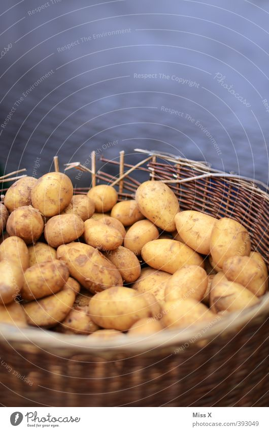 Healthy Brown Food Dirty Fresh Nutrition Vegetable Harvest Delicious Organic produce Sell Basket Vegetarian diet Potatoes Market stall Greengrocer