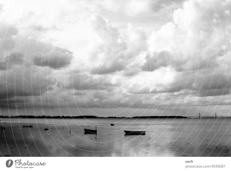 partly cloudy Lake Water Ocean Baltic Sea Lakeside Baltic coast boat Rowboat Nature Relaxation Denmark Calm tranquillity silent Gray Clouds Sky reflection