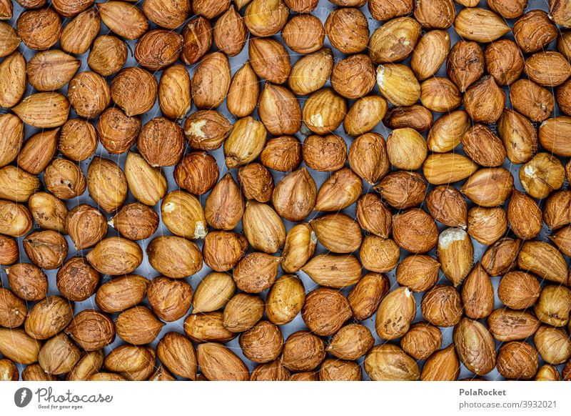 #S# cracked nuts II Hazelnut hazelnuts Hazel brown shell waste Christmas & Advent Brown Many Food Nut Close-up Nutshell Deserted Vegetarian diet diverse