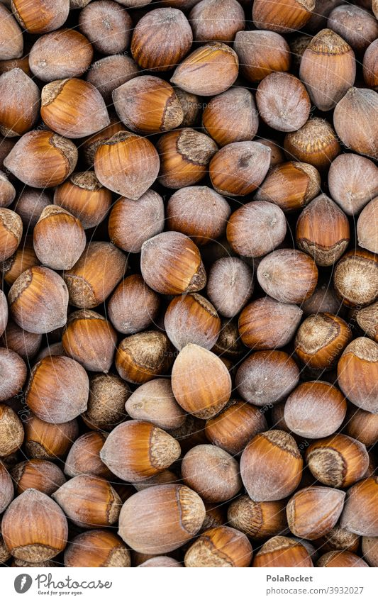 #S# Herd Nuts II Hazelnut hazelnuts Hazel brown shell waste Christmas & Advent Brown Many Food Close-up Nutshell Deserted Vegetarian diet diverse Nut brown