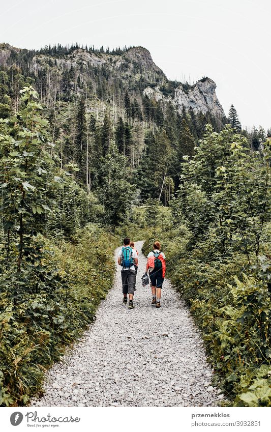 Family with backpacks hiking in a mountains actively spending summer vacation together activity adventure forest forest landscape forest path freedom fun