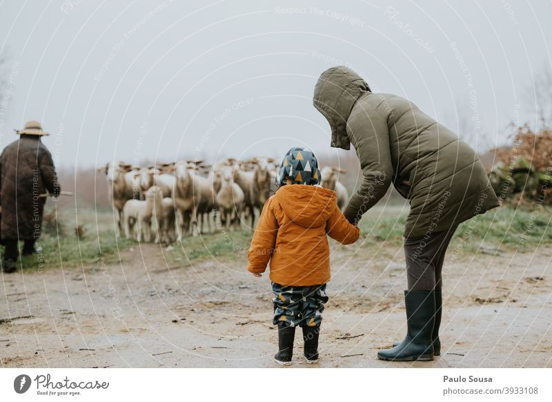 Mother and daughter watching sheeps motherhood Child Sheep travel Authentic Winter Together Family & Relations Love Happy Lifestyle Caucasian Woman care