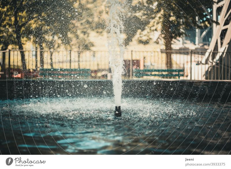 The water splashes upwards in a fountain | Fountain in summer Water Well Wet Drops of water Surface of water Water reflection water features Inject Effervescent