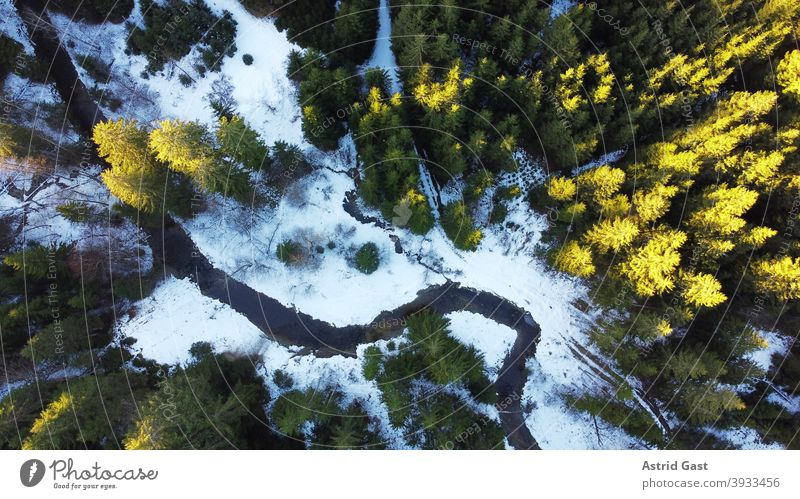 Drone photo of forest with stream in winter with light and shadow drone photo Aerial photograph Forest Brook bachlauf trees Landscape Winter Snow Sun Light
