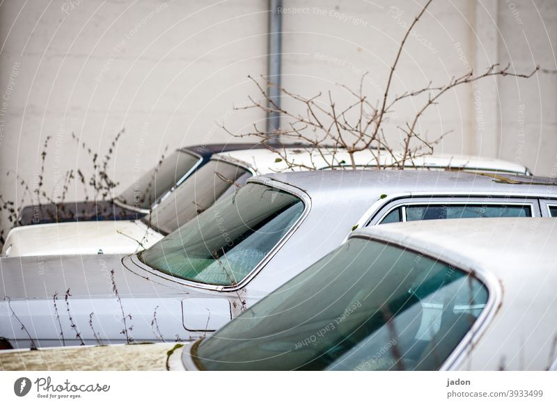parking space. car Car Window body Vehicle Deserted Scrap metal Old Means of transport Detail Retro Broken Vintage car Wrecked car Ready for scrap Decline