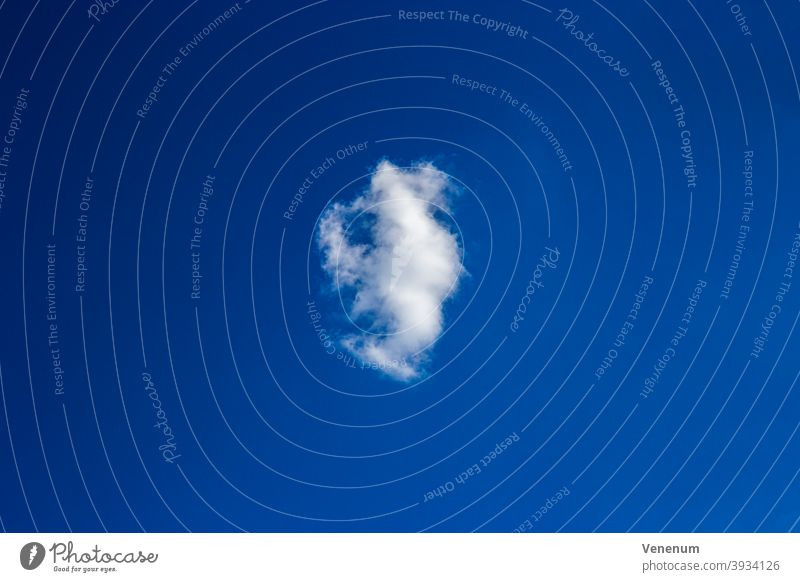 single Cloud Sky Astronomical studies Sky View Outdoor Nature Nature observation Cloud Field Thunderstorms Cloud collection Cloud accumulations Cloud formation