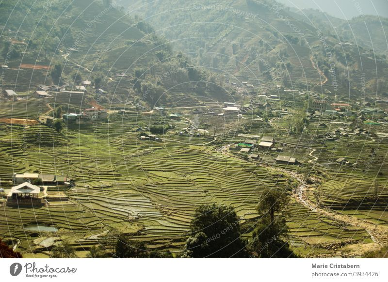 Traditional terraced rice paddy in Ha giang Province in Vietnam season aerial view no people tourist destination famous place foggy landscape rural landscape