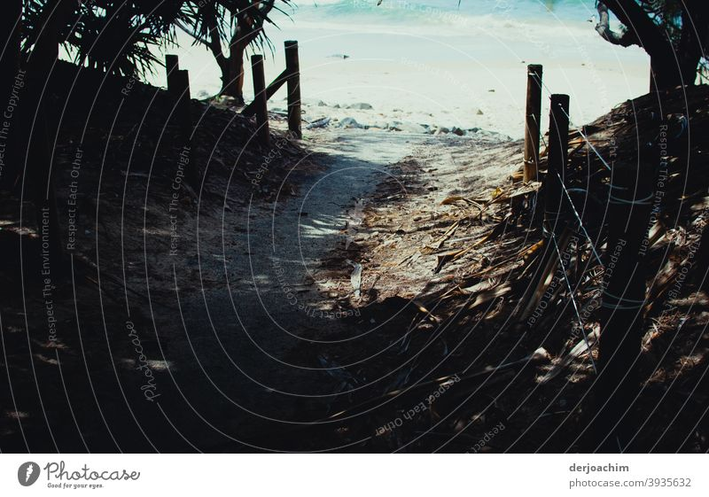 My way to the beach Way to the beach Nature Beach coast Ocean Summer Landscape Sand Water Lanes & trails Pole Fence palms Sunlight Shadow Vacation & Travel