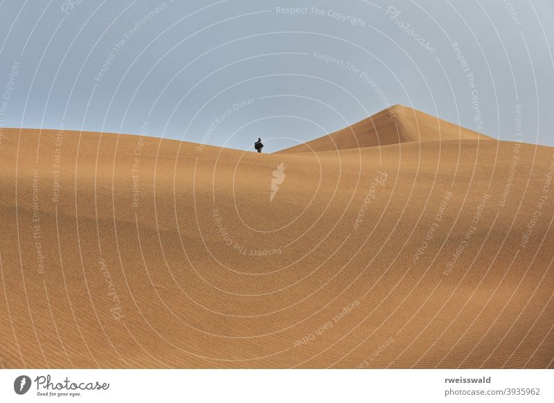 Tourist on a sand dune ridge. Badain Jaran Desert-Inner Mongolia-China-1166 tourist man visitor trekker walker hiker Mysterious Lakes Desert Badanjilin Shamo