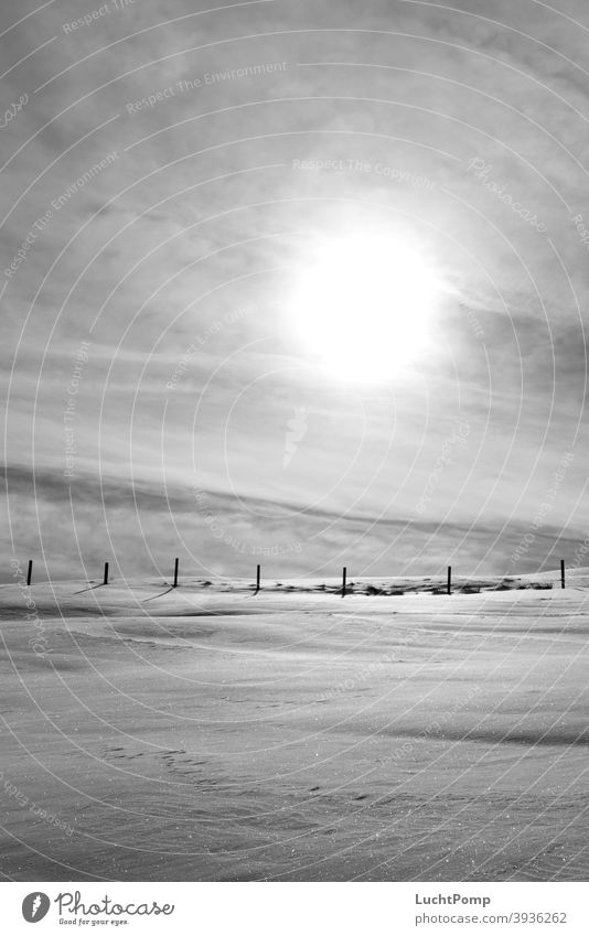 Snowy landscape in monochrome Snowscape Fence Fence post Meadow Sun overcast sky Cold Winter Exterior shot Deserted Sky Sunlight Shadow Frost Landscape Light