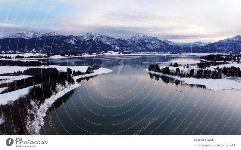 Aerial photo with a drone of the Forggensee in the Allgäu in winter in the blue hour Aerial photograph drone photo Lake Forggensee Body of water Bavaria