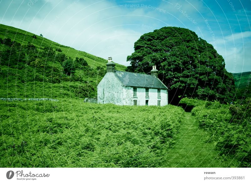 irish cottage 4 Environment Nature Landscape Tree Bushes Park Meadow Field Forest Hill House (Residential Structure) Detached house Hut Manmade structures