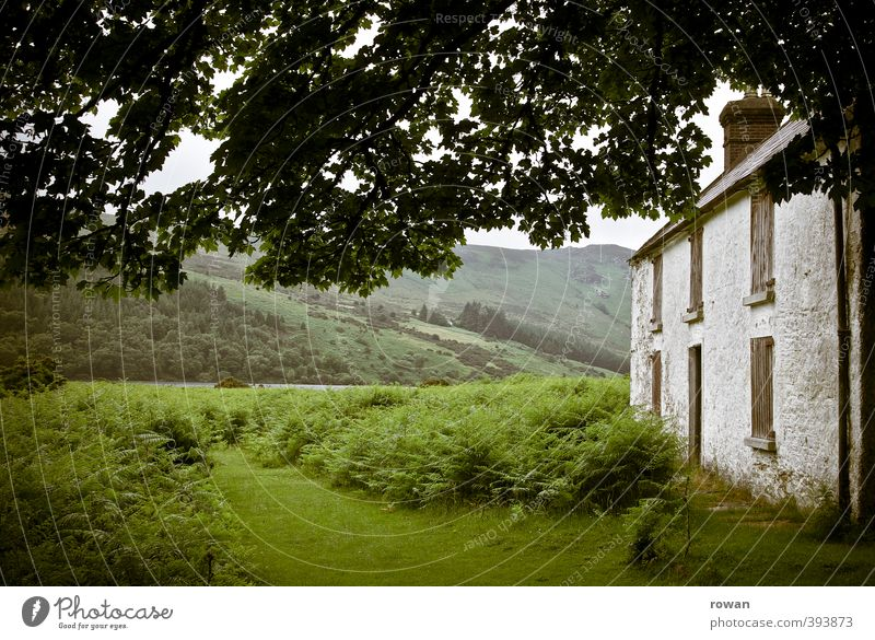 irish cottage Environment Nature Landscape Tree Grass Bushes Moss Garden Park Meadow Field Hill Mountain House (Residential Structure) Detached house Hut