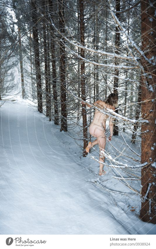 Happy New Year folks! Let the new ones be better. A girl is running through these snowy woods naked. It must be a sign of new challenges and new opportunities next year.