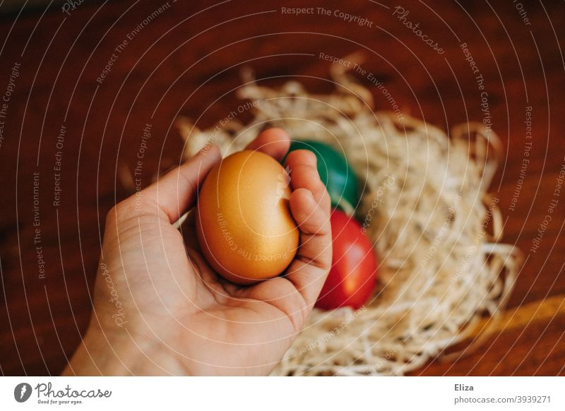 A hand holds a painted Easter egg, in the background an Easter nest with more colorful Easter eggs Painted variegated Easter egg nest Nest colorful eggs colored