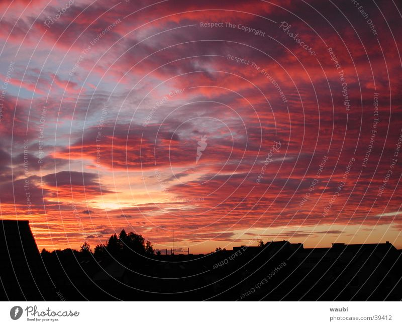 Sky Red Clouds Exceptional Dusk Impressive Natural phenomenon Evening sun Clouds in the sky Cloud cover Cloud field Cloud pattern Bright Colours Red sky