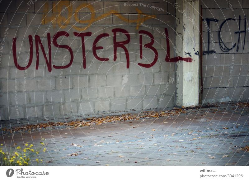and suddenly you're not immortal anymore. Graffiti Wall (building) Wall (barrier) Immortality Life Soul Everlasting Infinite Characters Word Letters (alphabet)
