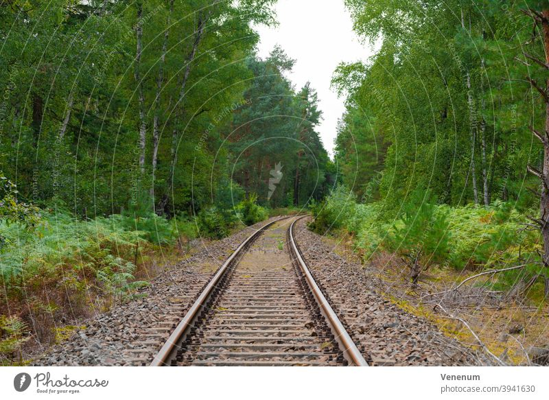old railway track in a forest in Germany Track track bed rails railroad rail iron rust railway sleepers Forest woods tree trees