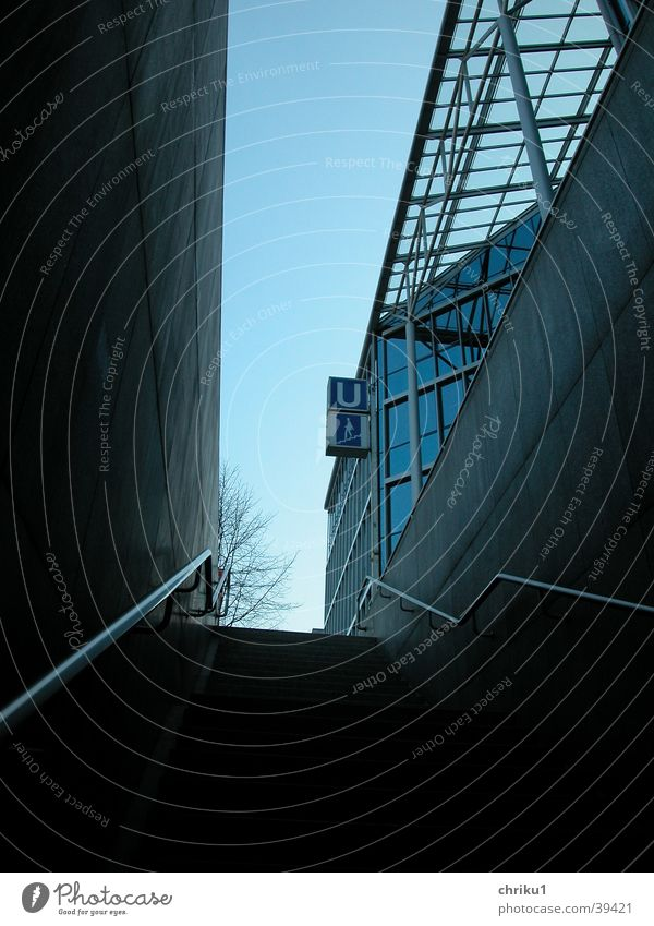 Blue Tree Winter Architecture Building Stairs Underground Public transit Glass roof