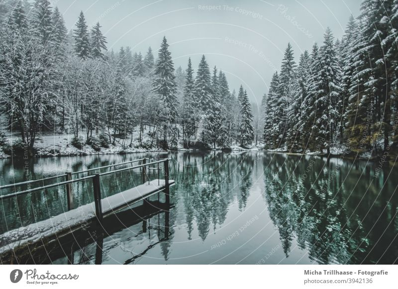 Winter landscape in the Thuringian Forest Pfanntalsteich oberhof Thueringer Wald Lake Water Snow Footbridge trees rail Reflections Nature Landscape Idyll