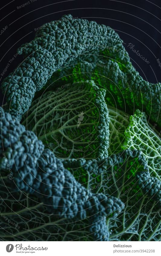 Beautiful savoy cabbage close up on black background Abstract Agriculture pretty Cabbage Close-up colourful Cooking Diet Eating Food Food Background Fresh