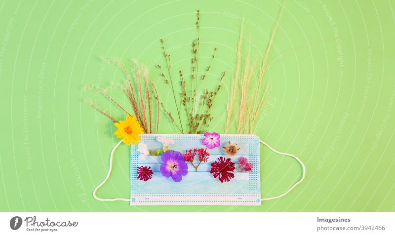 Medical protective mask, flowers and flowering grass - allergens. Spring and summer blooms and seasonal allergies and health problems. Allergy to pollen concept