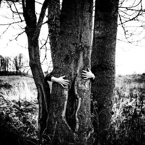 open slightly tree hands human fingers black and white monochrome sharp harsh dance Symbolism symbolic power Symbols and metaphors landscape posing no face