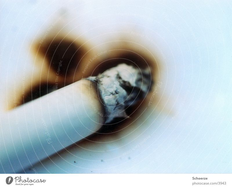 Cigarette on paper Paper Things burn hole Blaze Search Smoking