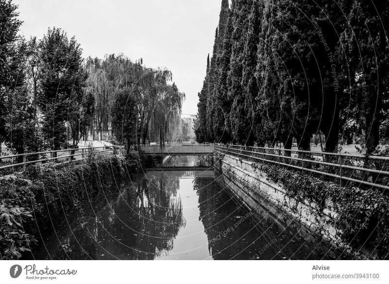 canal with water italy river veneto vicenza bacchiglione bridge italian city nature travel outdoor fiume green sky landscape tree blue europe grass trees