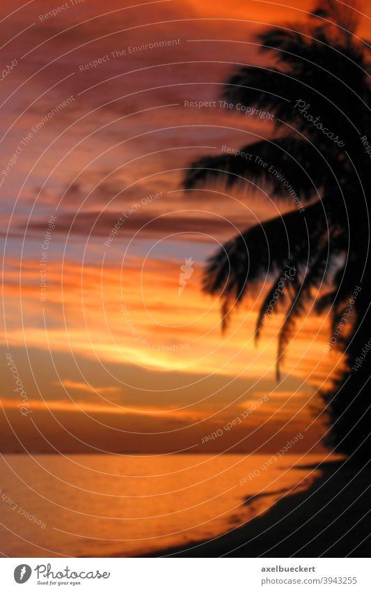 defocused tropical sunset background blur tropics sea ocean orange sky south pacific blurry blurred texture sunrise colorful romantic silhouette dusk beautiful