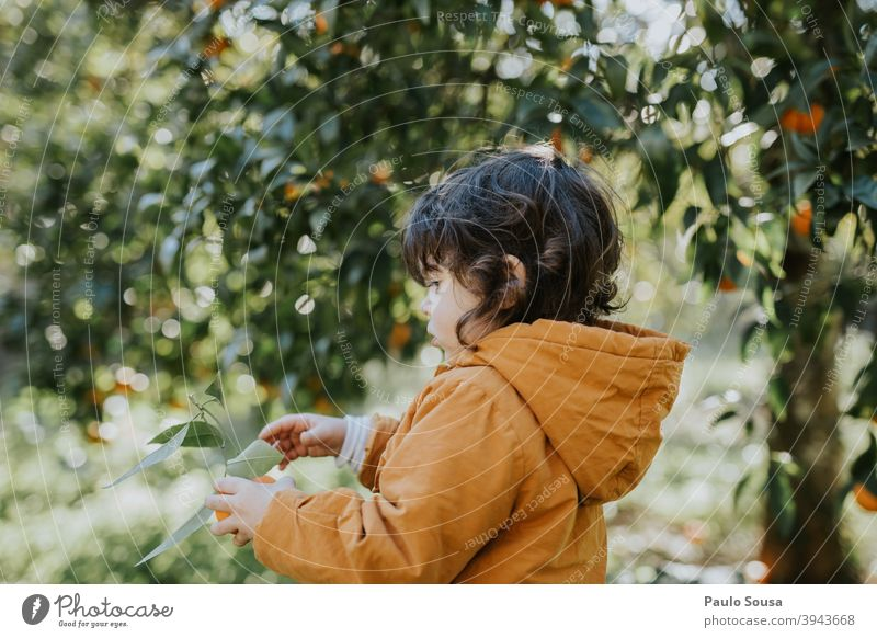 Little girl holding orange Orange Orange juice citrus Citrus fruits Child childhood Authentic Nature Natural Vitamin Colour photo Healthy Eating Fresh Nutrition