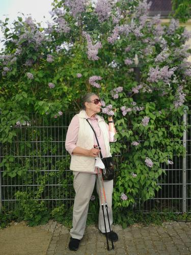 Lilac Scent Human being Woman person Senior citizen standing Walking sticks mouth-nose protection Mask in hand lilac sniff fragrances Spring blossom To enjoy