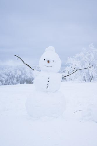 Olaf the little snowman stands on the meadow Snowman Winter Exterior shot Cold Playing White Joy Nature Seasons Smiling Infancy Happiness Snow ball Snowscape