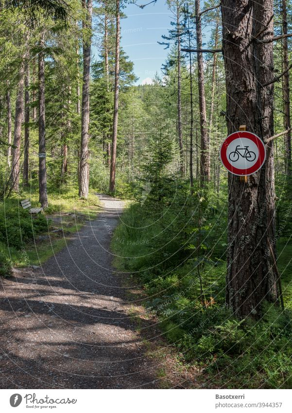 Bicycle prohibition sign on a narrow path in the forest mtb Mountain bike mountain bike Forest off Lanes & trails Narrow nobody Deserted hikers Conflict