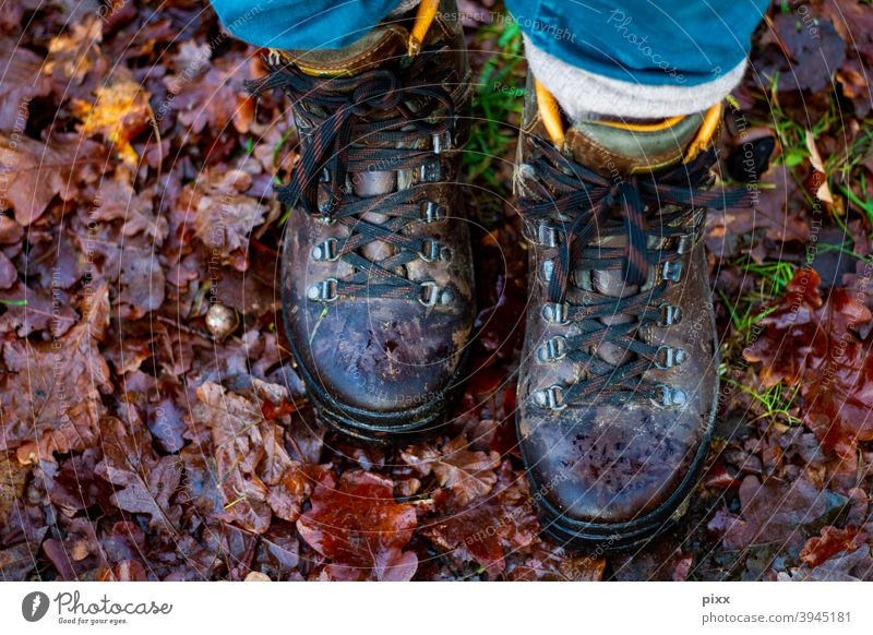 New Year's Walk 2021 Hiking Deciduous forest leaves Ground Walking To go for a walk Nature Hiking boots Footwear Woodground Forest flora Brown Bow Pants Autumn