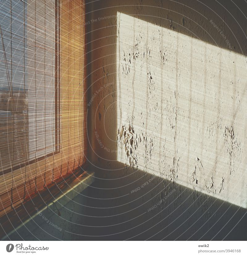 Overdrawn Wall (building) Corner Window Wall (barrier) Old Broken Redecorate Shaft of light Contrast Pattern Detail Light (Natural Phenomenon) Simple