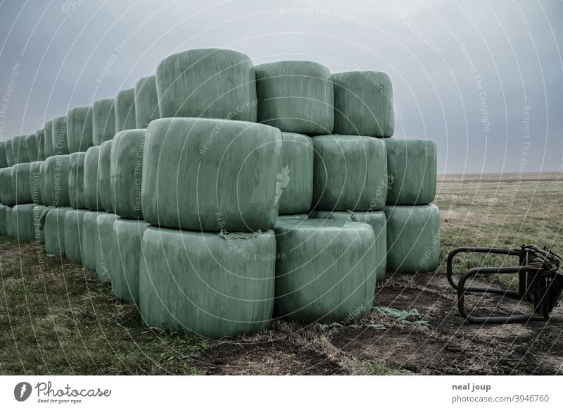 Hay bales wrapped in green foil stacked in a meadow Nature Agriculture Feed Supply Grass Green Packaged Packaging Packing film PVC Plastic plastic Exterior shot