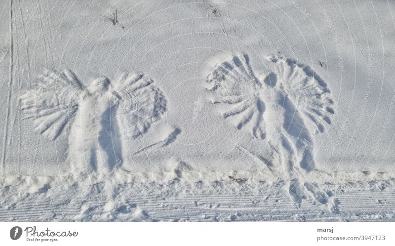 Snow Angel Snowy Gerlost Grand piano Winter White Prints story time Childhood memory Memory Infancy frisky Symmetry Snow layer Trip Movement Emotions