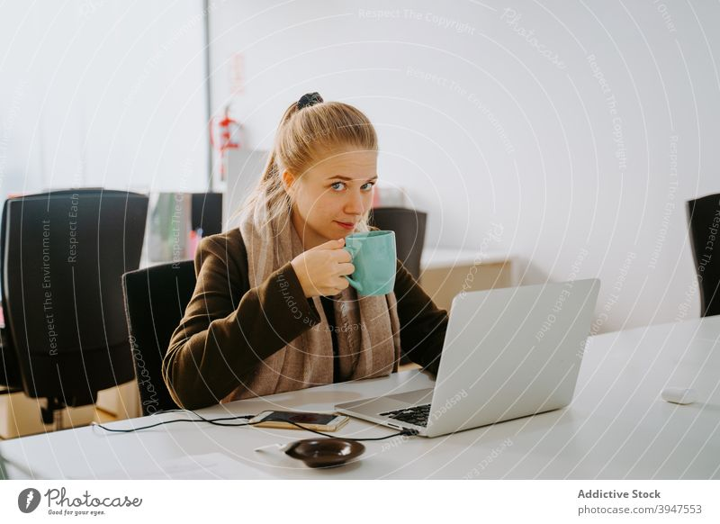 Blond Business woman working in an office business computer laptop female professional people businesswoman beautiful person manager attractive occupation young