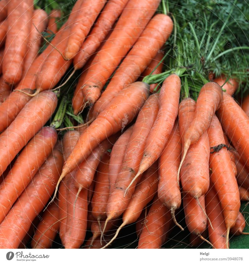 fresh carrots, bundled with greens roots Vegetable Vegetarian diet Organic produce Nutrition Fresh Food Healthy Colour photo Delicious Healthy Eating