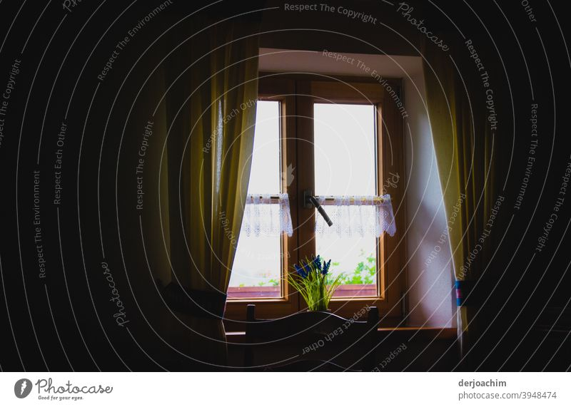 Window in a farmhouse, with a view to the outside.  With curtains and flowers. House (Residential Structure) Architecture Building Deserted Curtain