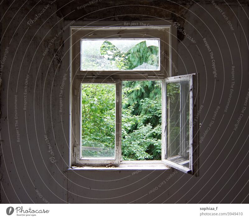 open window in an old abandoned house, lost place breeze breath freedom air look outside view frame green glass time inside white old window looking out window