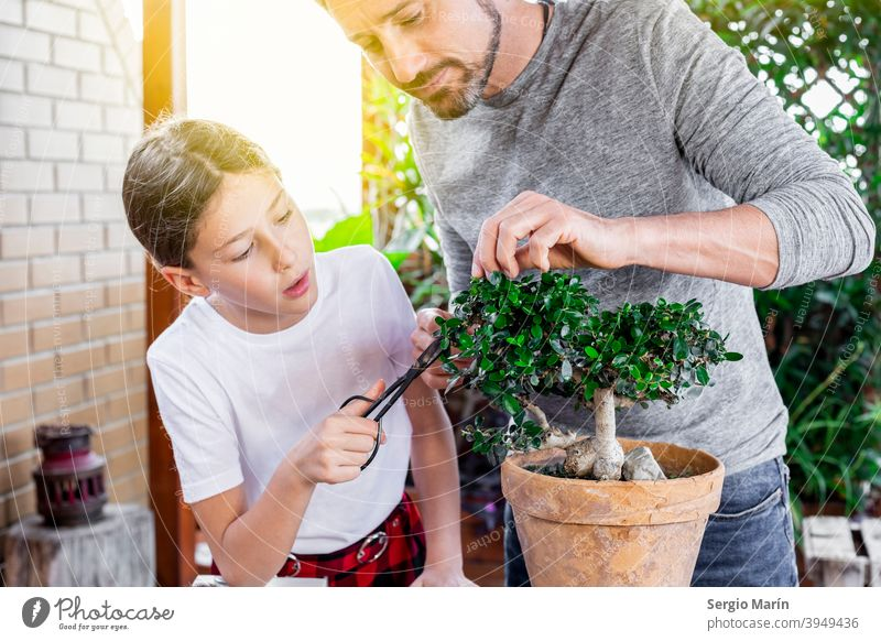 Senior man who teaches his daughter to care for a bonsai garden old hobby plant asian gardening senior 40s father teaching Father Daughter Child